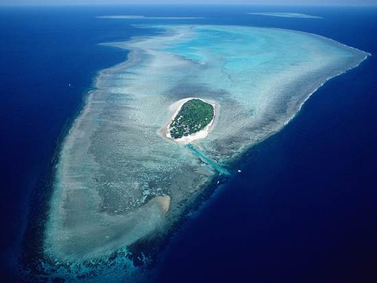 australia-great-barrier-reef-national-treasure-12