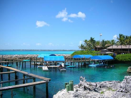 bahamas-the-paradise-island-1