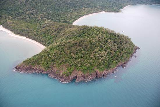 daintree-the-oldest-continuously-living-rain-forest-1