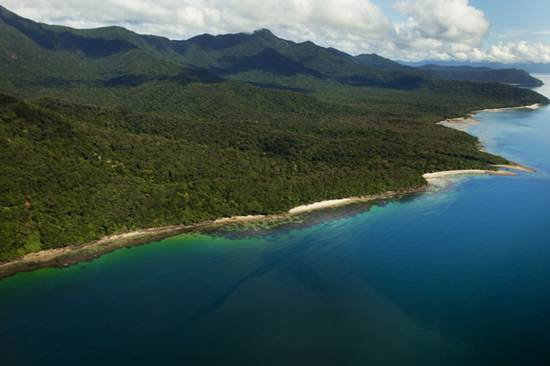 daintree-the-oldest-continuously-living-rain-forest-12