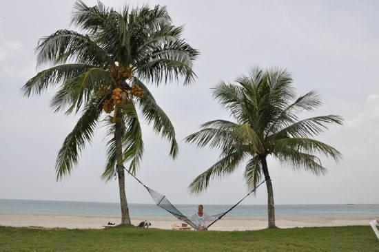 dutch-caribbean-island-paradise-on-the-abc-islands-aruba-10