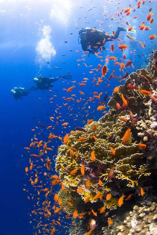 egypt-red-sea-red-land-5
