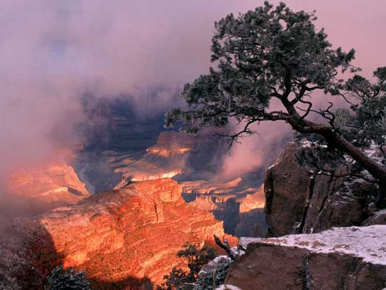 grand-canyon-the-rocky-gorge-usa-5