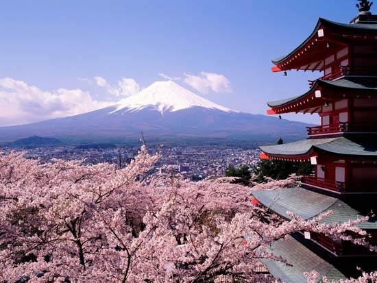 japan-mount-fuji-the-holy-mountain-5