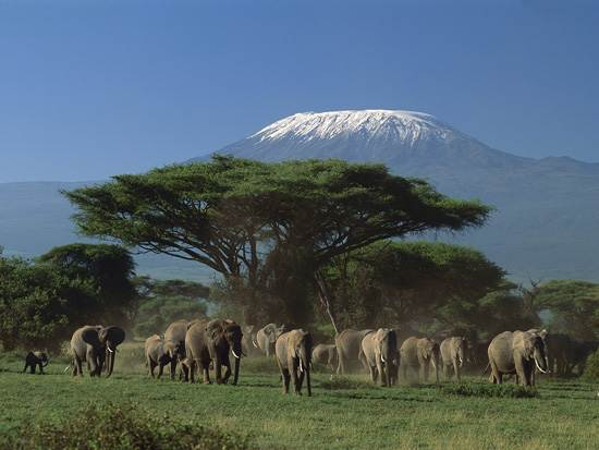 mount-kilimanjaro-mountain-of-light-7