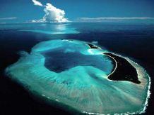 Palau The Black Islands one of  7 Underwater Wonder of the World.