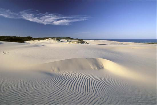 queensland-fraser-sandy-island-5