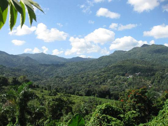the-caribbean-holiday-sea-puerto-rico-13