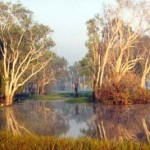 Traveling to Australia   Kakadu National Park  Cultural Heritage