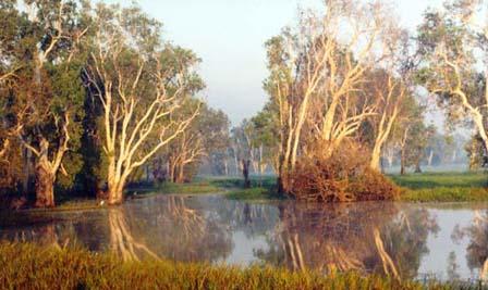 Traveling to Australia   Kakadu National Park  Cultural Heritage