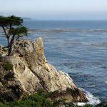 Traveling to California  Peninsula, 17-mile drive  Lone Cypress