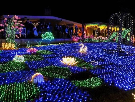 Fantastic-Christmas-Holiday-Lights-Display_09