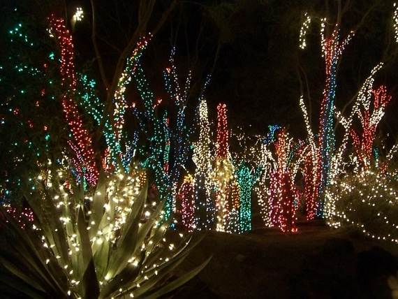 Fantastic-Christmas-Holiday-Lights-Display_34