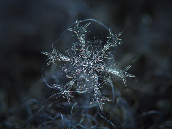 Snowflakes and Snow Crystals_01