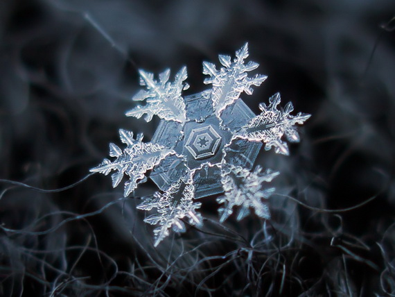 Snowflakes and Snow Crystals_03