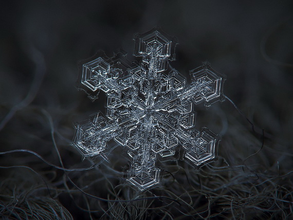 Snowflakes and Snow Crystals_05