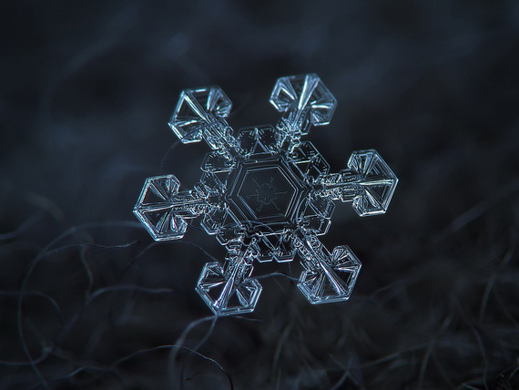 Snowflakes and Snow Crystals_06