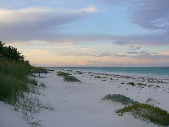 Pink-Sand-Beach-in-Harbour-Island-Bahamas-_06