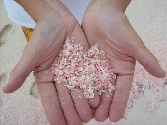 Pink-Sand-Beach-in-Harbour-Island-Bahamas-_12