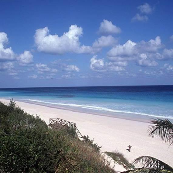 Pink-Sand-Beach-in-Harbour-Island-Bahamas-_20