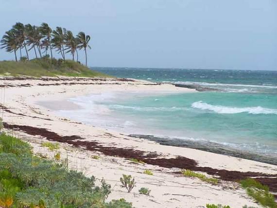 Pink-Sand-Beach-in-Harbour-Island-Bahamas-_32