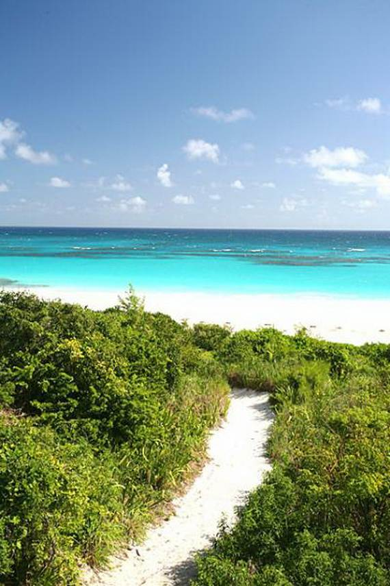 Pink-Sand-Beach-in-Harbour-Island-Bahamas-_38