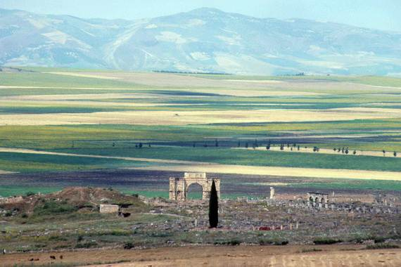 Archaeological-Site-of-Volubilis-Morocco_231