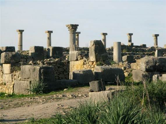 Archaeological-Site-of-Volubilis-Morocco_301