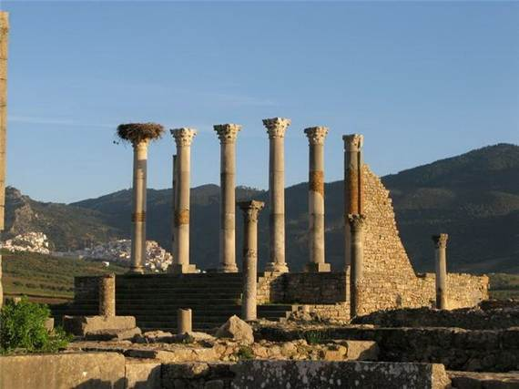 Archaeological-Site-of-Volubilis-Morocco_321