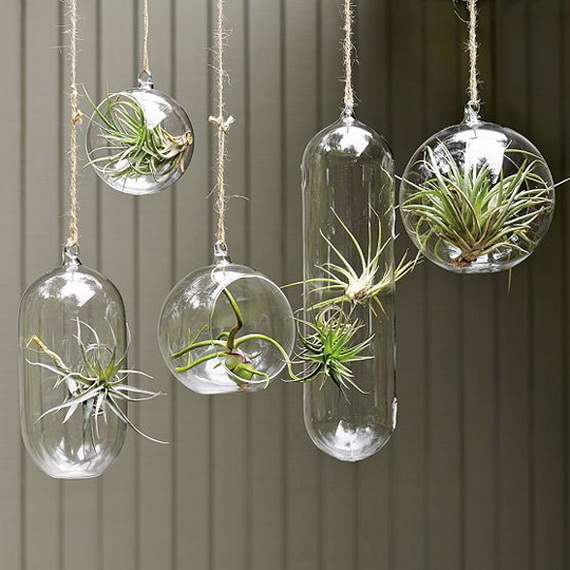 Plant Decor Ideas Decorating Home With Indoor Plants Stylewhack
