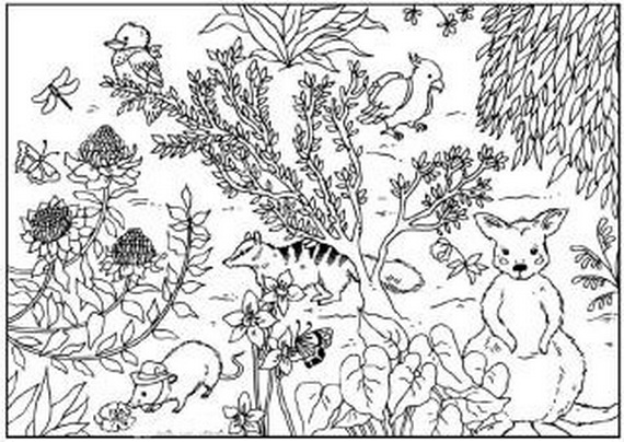 Australia- Day- Coloring- Pages- for- Kids_36