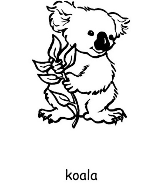 Australia- Day- Coloring- Pages- for- Kids_43