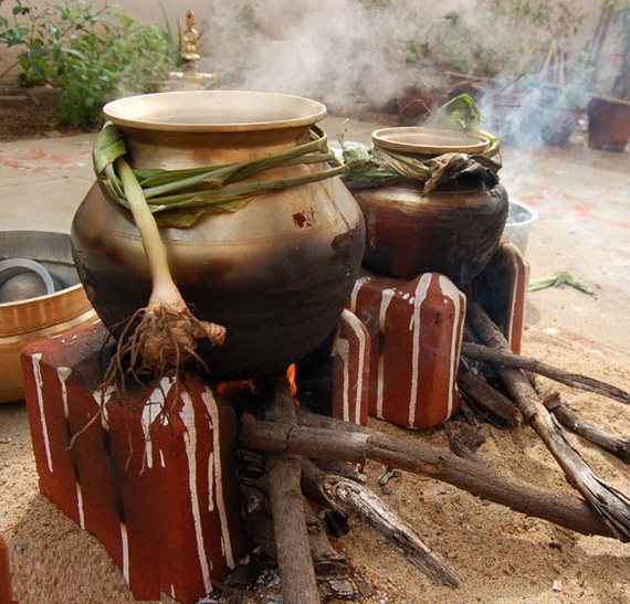 Pongal – Celebrating the Indian Harvest Festival_17