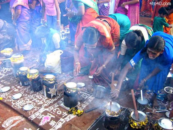 Pongal – Celebrating the Indian Harvest Festival_20