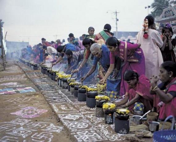 Pongal – Celebrating the Indian Harvest Festival_33