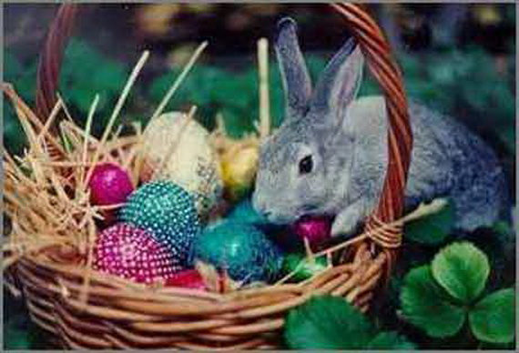 Exclusive- Outdoor- Easter- decorations_60