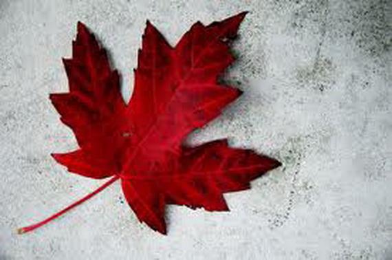History of Canada Day Celebration (14)