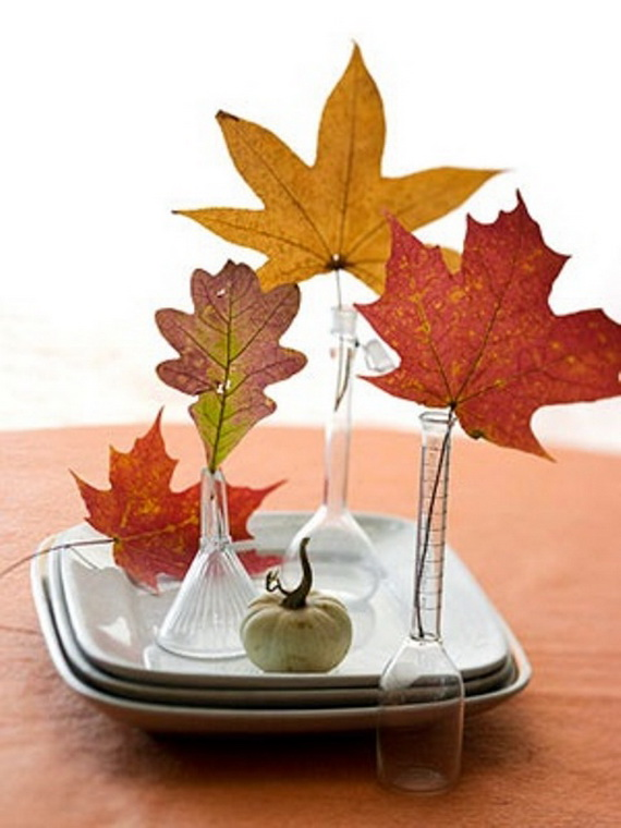 Easy Ways Using Autumn Leaves _35