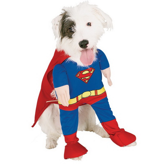 Unique and Beautiful Halloween Costumes Ideas for Pets_01