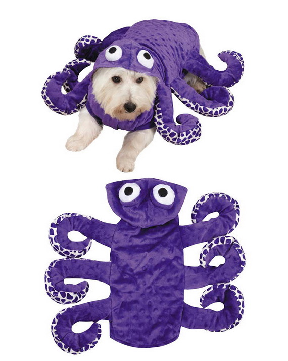 Unique and Beautiful Halloween Costumes Ideas for Pets_18