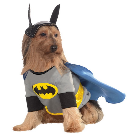 Unique and Beautiful Halloween Costumes Ideas for Pets_22