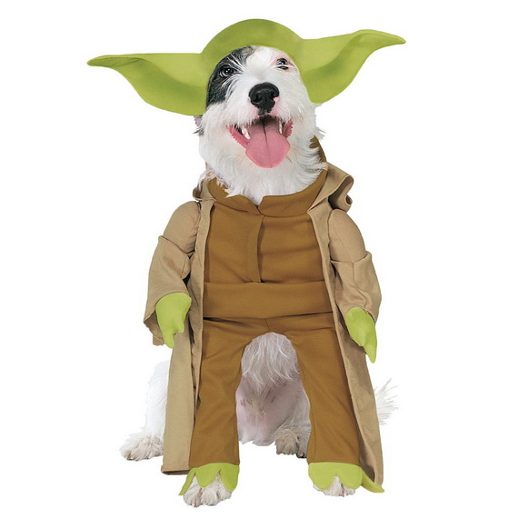 Unique and Beautiful Halloween Costumes Ideas for Pets_24