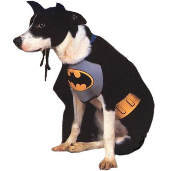 Unique and Beautiful Halloween Costumes Ideas for Pets_27