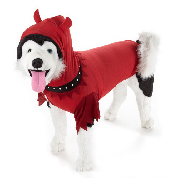 Unique and Beautiful Halloween Costumes Ideas for Pets_32