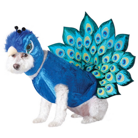Unique and Beautiful Halloween Costumes Ideas for Pets_36