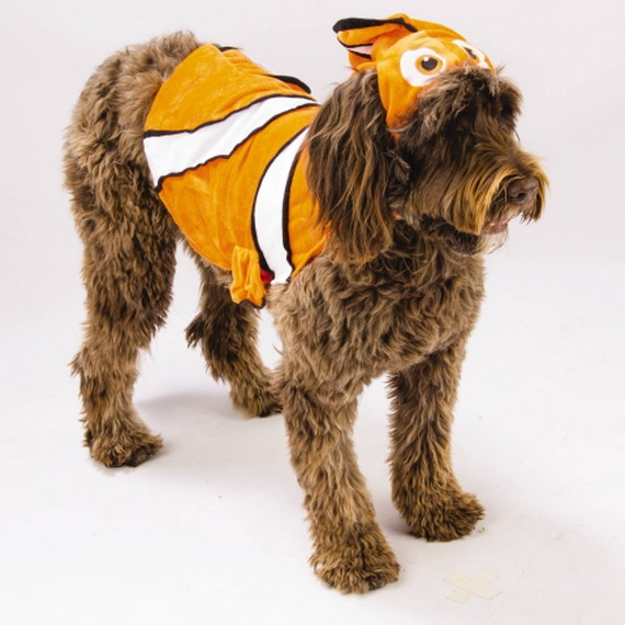 Unique and Beautiful Halloween Costumes Ideas for Pets_41