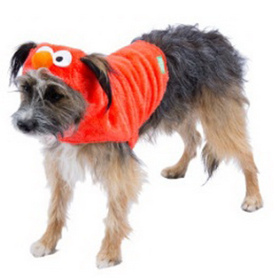 Unique and Beautiful Halloween Costumes Ideas for Pets_45
