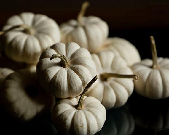 Elegant White Halloween Ideas_27