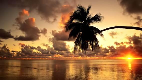 A-Seven-Day-Beach-Vacation-The-Relaxing-Hawaiian-Islands-_54