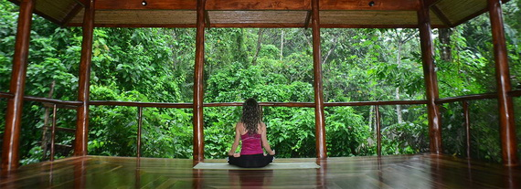 Luxurious Rainforest Experience Nayara Springs, Costa Rica_27